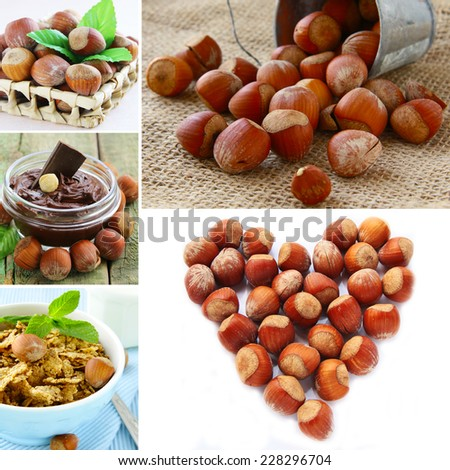 collage hazelnut, chocolate cream and muesli with nuts - stock photo