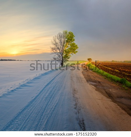 Collage mixing two photos of the tree and road by the field in winter and summer time. Summer vs Winter. - stock photo