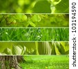 Collage nature green background. - stock photo