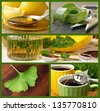 Collage of alternative healing remedies (includes honey with lemon, aloe vera, lemon balm plant, herbal tea and a ginkgo leaf) - stock photo