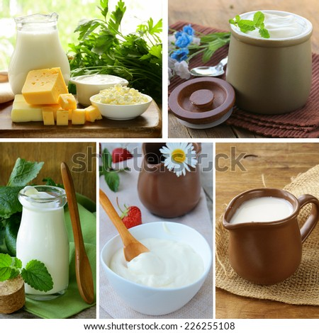 collage of assorted dairy products (milk, cheese, yogurt, sour cream) - stock photo