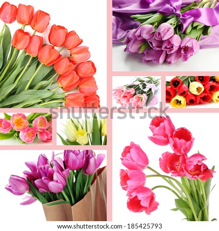 Collage of beautiful tulips