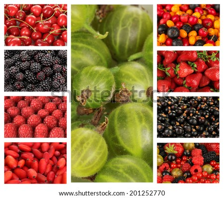 Collage of berries close-up - stock photo