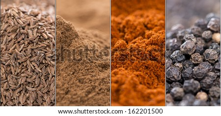 Collage of different spices (Caraway, Cinnamon, Paprika Powder and Black Pepper) - stock photo