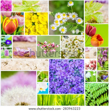 collage of flowers and animals of spring time on white ceramic mosaic tile, many different flora and colors connected in one picture