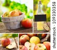 Collage of fresh apples and freshly squeezed juice at a rustic farmers market in a healthy diet or agricultural concept - stock photo