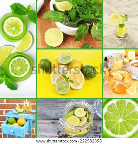 Collage of fresh limes and lemons - stock photo