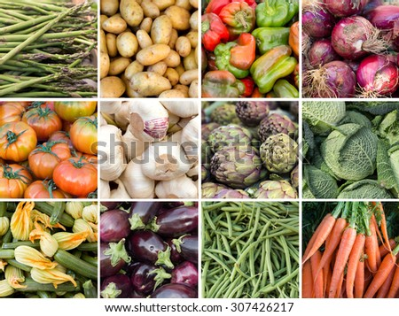 Collage of fresh vegetables: asparagus, potatoes, paprika, onion, tomatoes, garlic, artichokes, cabbage, zucchini, eggplant, green beans and carrots