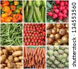 Collage of fresh vegetables backgrounds - stock photo