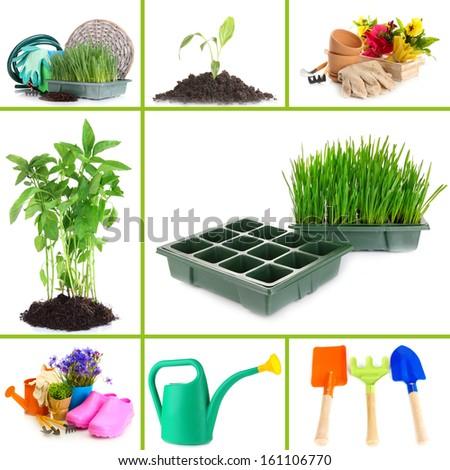 Collage of gardening theme - stock photo