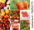 Collage of growing tomatoes and food - stock photo