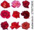 collage of nine red roses - stock photo