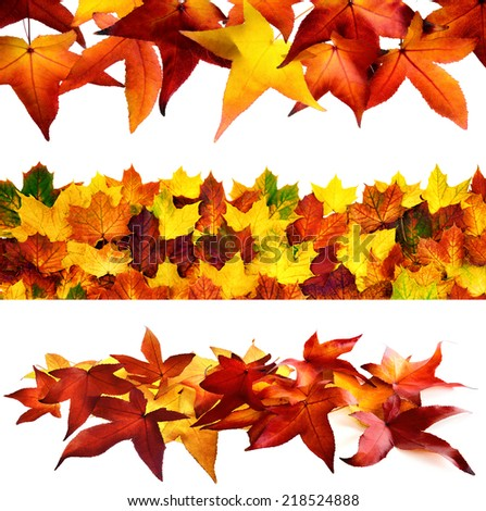 Collage of 3 ornate autumn leaves borders isolated on pure white background - stock photo