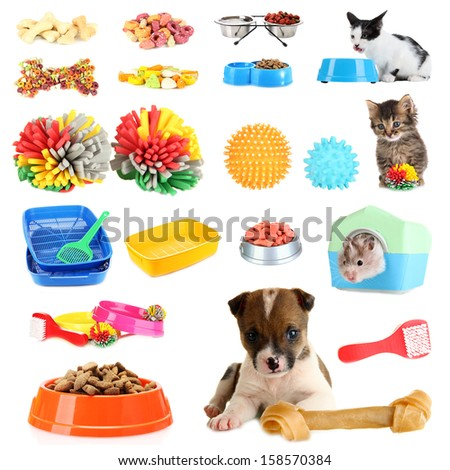 Collage of pets and different stuff for them - stock photo