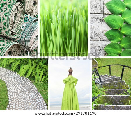 Collage of photos in green colors - stock photo