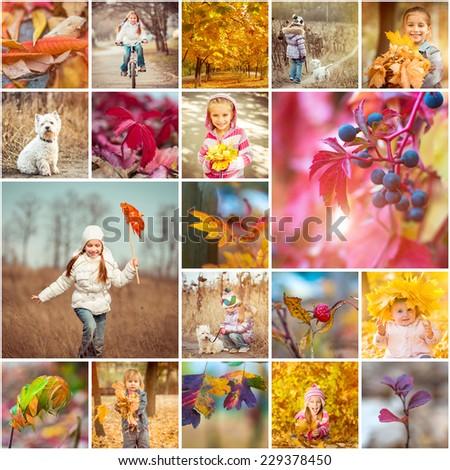 collage of photos on a autumn theme - stock photo