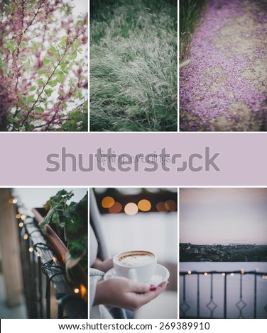 Collage of six photos about spring. Cozy mood - stock photo
