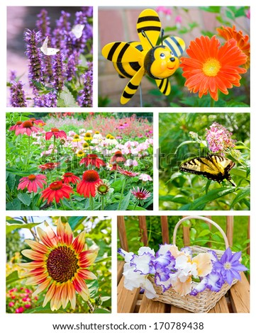 Collage of summer garden flowers. - stock photo