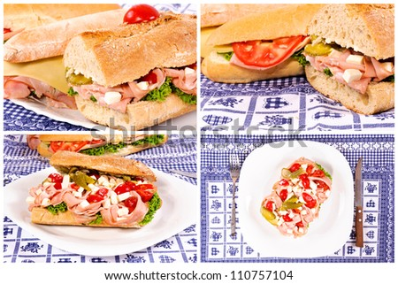Collage of the yummy sandwiches - stock photo