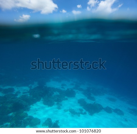 Collage of underwater coral reef and sea surface with green island  on the background - stock photo