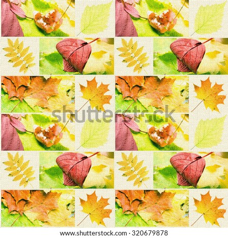 collage of various autumn leaves - stock photo