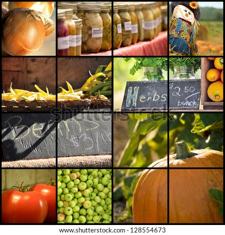 Collage of various farmer's market and harvest images