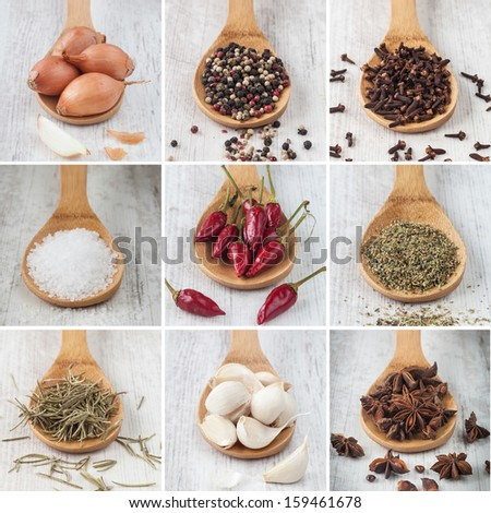 collage photo composition of different kind of raw spices - stock photo