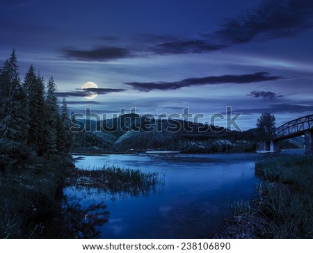 collage view on bridge through the forest river near village in mountains at night in full moon light - stock photo