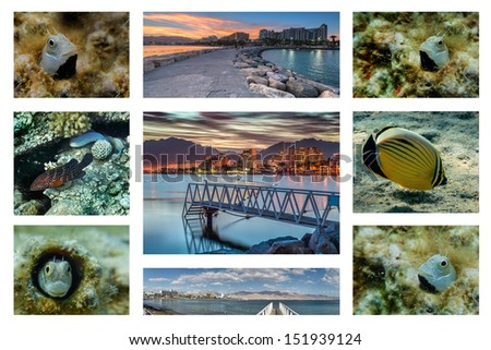 Collage with a view of the central beach of Eilat city and some tropical fish from the surrounding coral reefs of the Red Sea  - stock photo