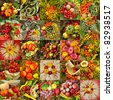 collage with autumnal vegetable compositions - stock photo