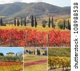 collage with fantastic landscape of vineyards in Tuscany in autumn, at horizon St. Antimo Abbey in Castelnuovo dell'Abate, land of famous red italian wine Brunello di Montalcino, Italy, Europe - stock photo