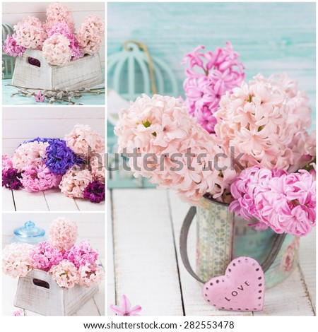 Collage  with fresh pink hyacinths in vase, little pink heart  on white wooden planks against turquoise wall. Selective focus.  - stock photo