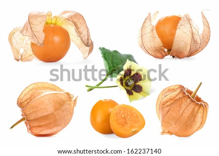Collage with physalis - stock photo