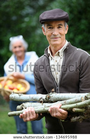 Collecting wood for the fire. - stock photo