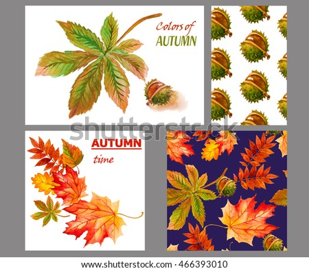 collection beautiful colorful autumn leaves Set for design