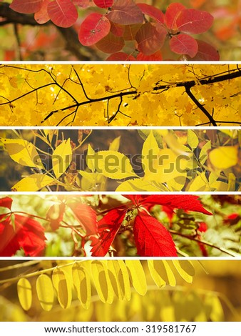 Collection from different kinds of autumn seasonal horizontal backgrounds, suitable for web sites