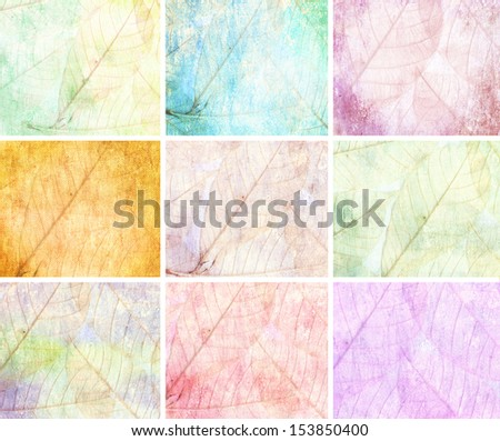 collection leaves color of trees Grunge background vintage abstract rusty colored background - stock photo