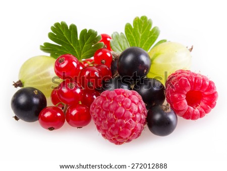 collection of berries on white background - stock photo