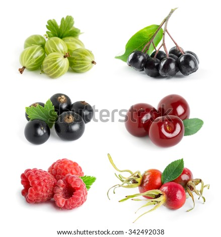 Collection of berries on white background