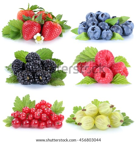 Collection of berries strawberries blueberries red currant berry fruits isolated - stock photo
