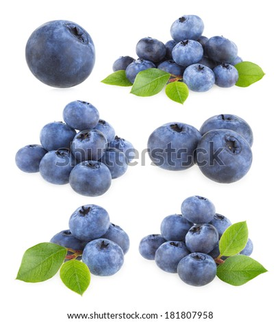 collection of 9 blueberry images - stock photo
