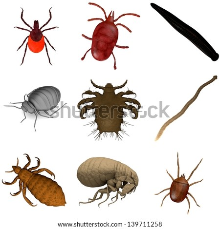 collection of 3d renders - parasites - stock photo