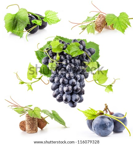 Collection of Dark grapes and cork, Isolated on white background - stock photo