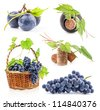 Collection of Dark grapes, bottle and cork, Isolated on white background