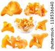 Collection of Edible wild mushroom chanterelle (Cantharellus cibarius) isolated on white background - stock photo