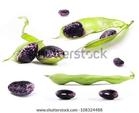 Collection of fresh beans on white background - stock photo
