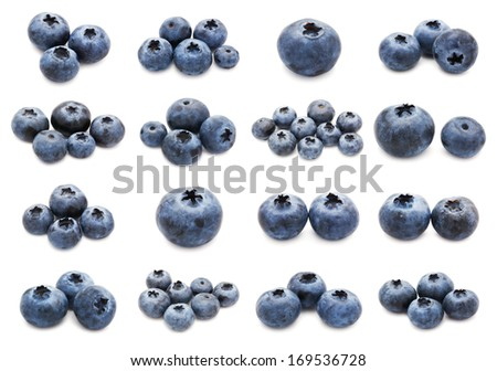 Collection of fresh blueberry or bilberry  isolated on white background - stock photo