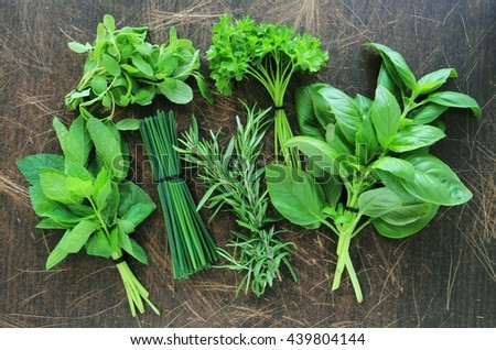 Collection of fresh herbs on wooden background - stock photo