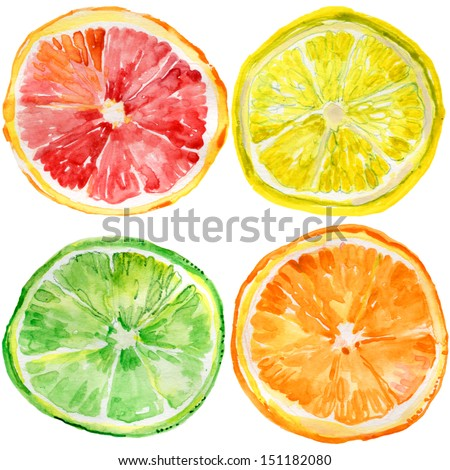 collection of fresh ripe orange, lemon, lime, grapefruit - stock photo