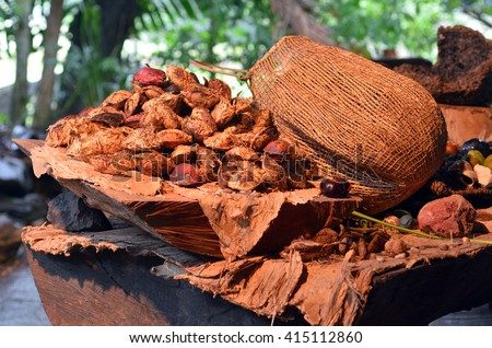 Collection of fruit and seeds food eaten by the indigenous Australian Yirrganydji Aboriginal people from the rainforests of Queensland, Australia. - stock photo